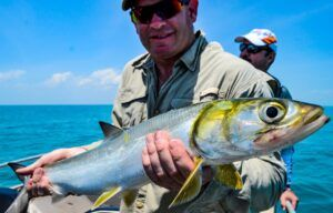 Darwin Harbour / Dundee Beach Sport Fishing